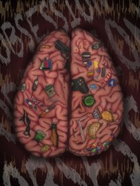 17623-brainobessioncopy